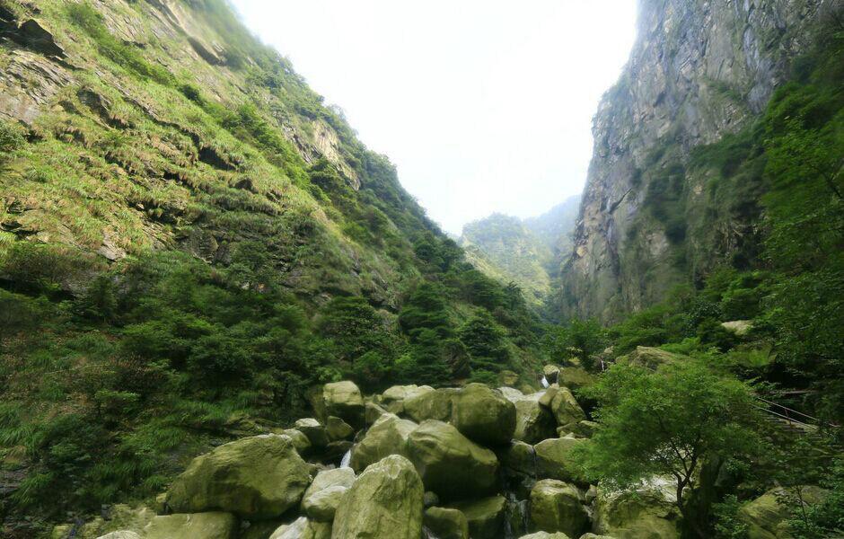 玛玉茶因产于绿春县骑马坝乡哈尼山寨玛玉村而得名.